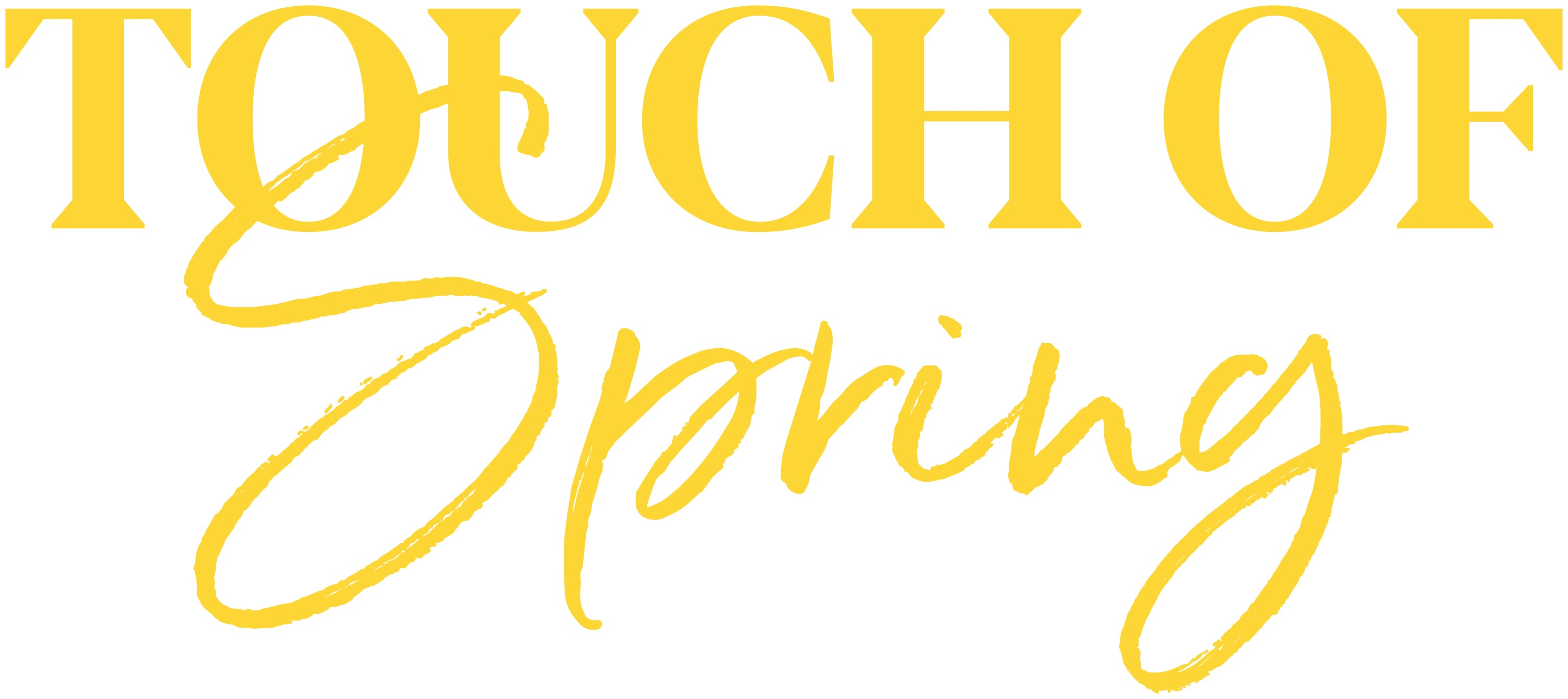 logo touch of spring